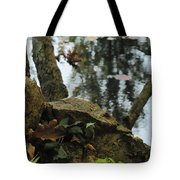 Paradise Springs Reflections Tote Bag