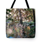 Paradise Springs Trees Tote Bag