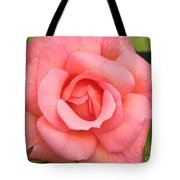 Paris Rose Tote Bag