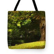 Park Bench Beside The Owenriff River In Tote Bag