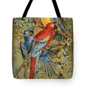 Parrots: Macaws, 19th Cent Tote Bag