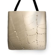 Part Of A Spider Web Shows Tote Bag