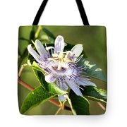Passion Flower - May Pop Bloom Tote Bag