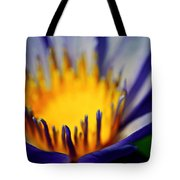Passion Is Energy Tote Bag