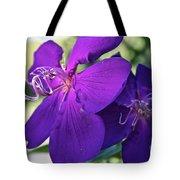 Passion Purple Tote Bag