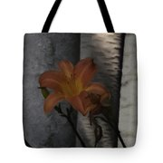 Passover Tote Bag