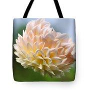Pastel Dahlia Tote Bag