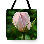 Pastel Rose Petals Tote Bag
