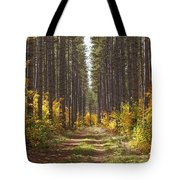 Path Into The Forest In Autumn Sault Tote Bag
