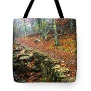 Path Through Forest, Shenandoah Tote Bag