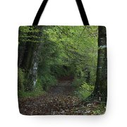 Path Through The Woods Inistioge Tote Bag
