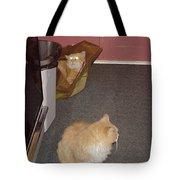 Patty Vs Vengeful Sack God  Tote Bag
