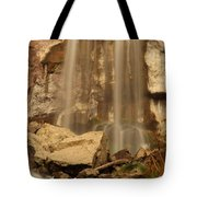 Paulina Falls Cascade Tote Bag