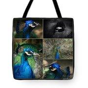 Pavo Cristatus IIi The Heart Of Solitude  - Indian Blue Peacock  Tote Bag