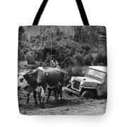 Peace Corps - Chile Tote Bag