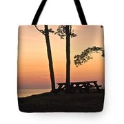 Peaceful Evening Picnic 7109 Tote Bag