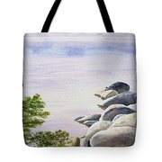 Peaceful Place Morning At The Lake Tote Bag