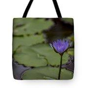 Peaceful Waterlily Tote Bag