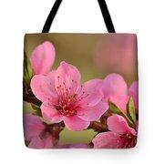 Peach Beautiful Tote Bag