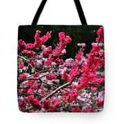 Peach Blossom Tote Bag by Kaye Menner