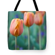 Peach Tulips  Square Format Tote Bag