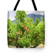 Peaches On Tree Tote Bag by Elena Elisseeva