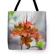 Peachy Alabama Azalea Tote Bag