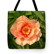 Peachy Blush Tote Bag