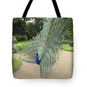 Peacock Glory Tote Bag