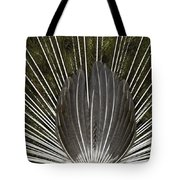 Peacock Tail Graphic Tote Bag