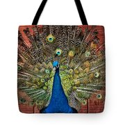 Peacock Tails Tote Bag