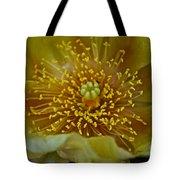 Pear Cactus Close Up Tote Bag