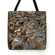 Pebbles And Shells By The Sea Shore Tote Bag
