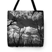 Pecan Trees Tote Bag