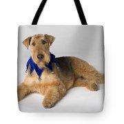 Pedigree Dog Tote Bag
