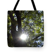 Peek A Boo Sunshine Tote Bag