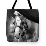 Peek'a Boo - Black And White Tote Bag