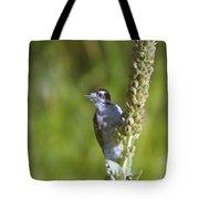 Peekaboo Birdie  Tote Bag