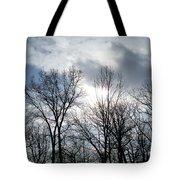 Peeking Sun Through The Branches Tote Bag