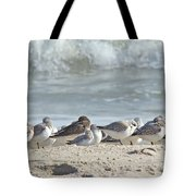 Peeps At The Beach #2 Tote Bag