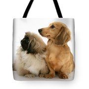 Pekingese And Dachshund Puppies Tote Bag