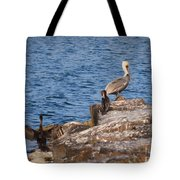 Pelican And Cormorants Tote Bag