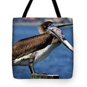 Pelican I Tote Bag
