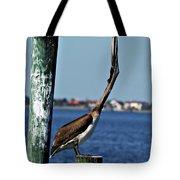 Pelican IIi Tote Bag