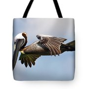 Pelican Prepares To Dive Tote Bag