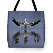 Pelican Protector - Florida Wildlife Scene Tote Bag
