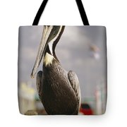Pelican Visiting City Marina Tote Bag