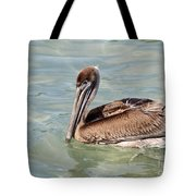 Pelican Waiting For A Catch Tote Bag