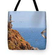 Pelicans Off The Point Tote Bag