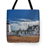 Pemaquid Point Lighthouse 4800 Tote Bag